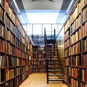 Библиотеки Борисовки