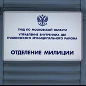 Отделения полиции Борисовки
