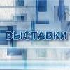 Выставки в Борисовке